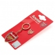 ARSENAL Football Club Official Keyring & Badge Set