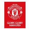 MANCHESTER UNITED Football Club Official Mini Poster Crest 107 MP1592