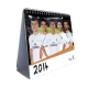 REAL MADRID Football Club Official Desktop Calendar 2014 CS1411